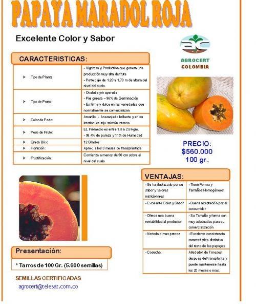 Vendo semilla de papaya maradol  cubana