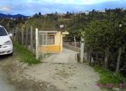 Vendo terreno con casa de hormigon y otra de tapia