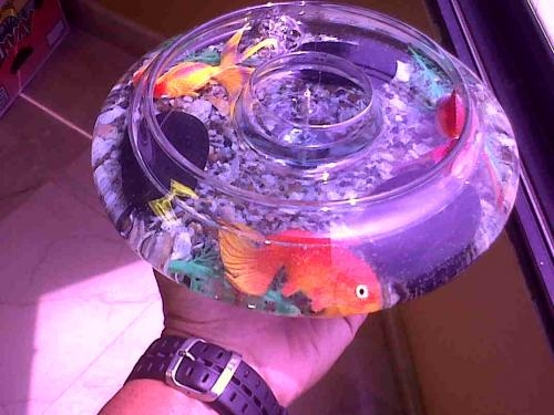 Fotos de Parafina en gel y velas decorativas. 3