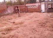 Vendo terreno en La tarazana