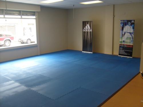 Tao center : aikido, taekwondo, tae bo y yoga.