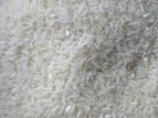 Se vende Vendo arroz conejo