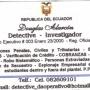 DETECTIVE INVESTIGADOR PRIVADO Y PPI