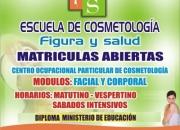 ESCUELA DE COSMETOLOGIA FIGURA Y SALUD