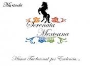 Mariachis en Quito. Mariachi Serenata Mexicana