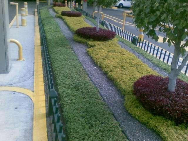 Jardineras en veredas con riego automático