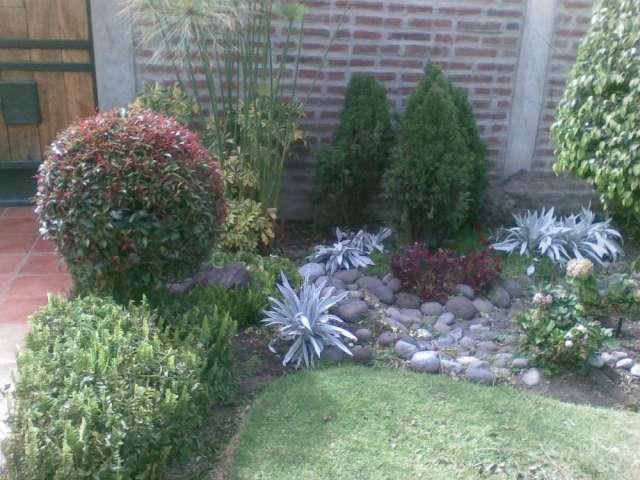Bonsai en jardín