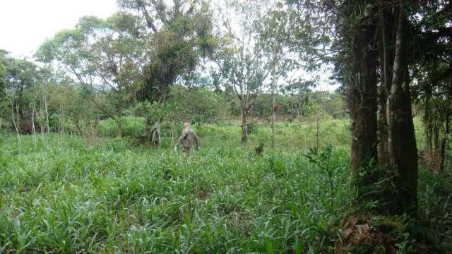 Fotos de Vendo terreno en somasunsci cerca de santa clara , clima muy bueno 4