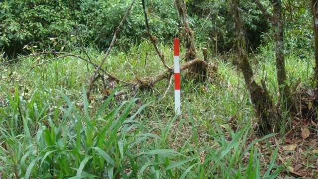 Fotos de Vendo terreno en somasunsci cerca de santa clara , clima muy bueno 3