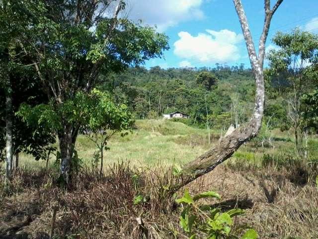 Fotos de Vendo terreno en somasunsci cerca de santa clara , clima muy bueno 2