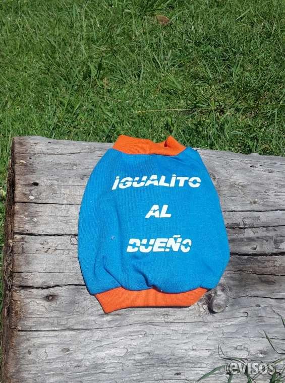Camiseta chiguagua