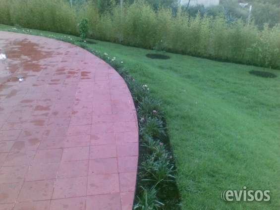 Jardín con riego