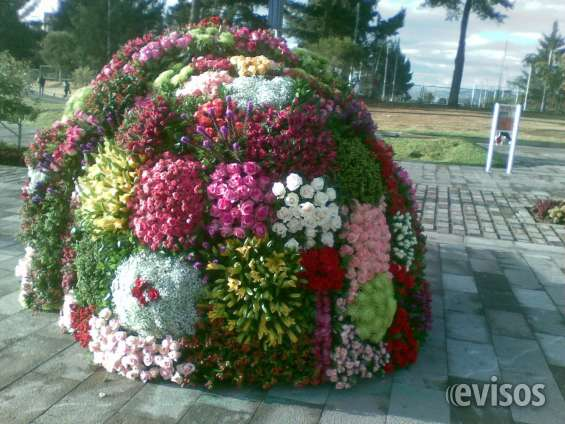 Ramos gigantes de flores