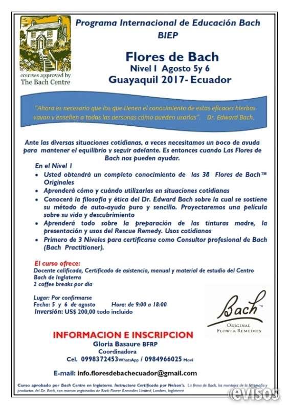 Certificado de practitioner internacional al terminar los 3 niveles. más información e inscripciones gloria basaure bfrp coordinadora y practitioner 0998372453 whatsapp