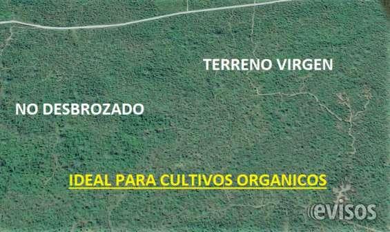 Terreno para desarrollo - sembrios - ganado - industria - hacienda oportunidad