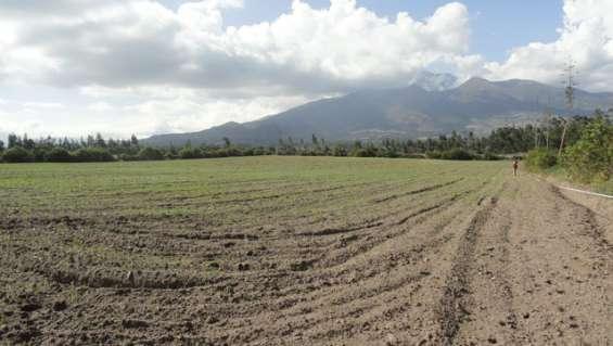 Vendo terreno de 7500 m2 en cotacachi sector san martin