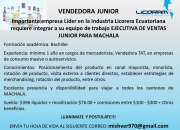 Vendedora junior tat machala