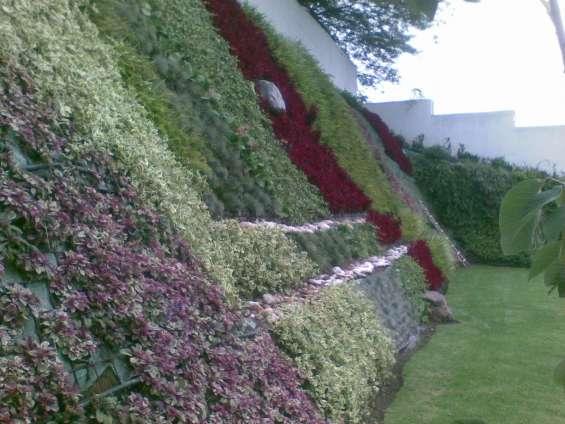 Muro vertical